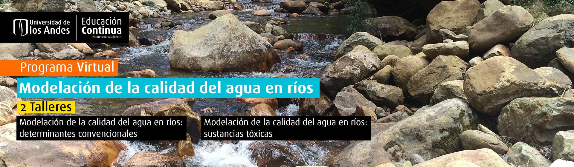 Programa Virtual Modelación de la calidad del agua en ríos